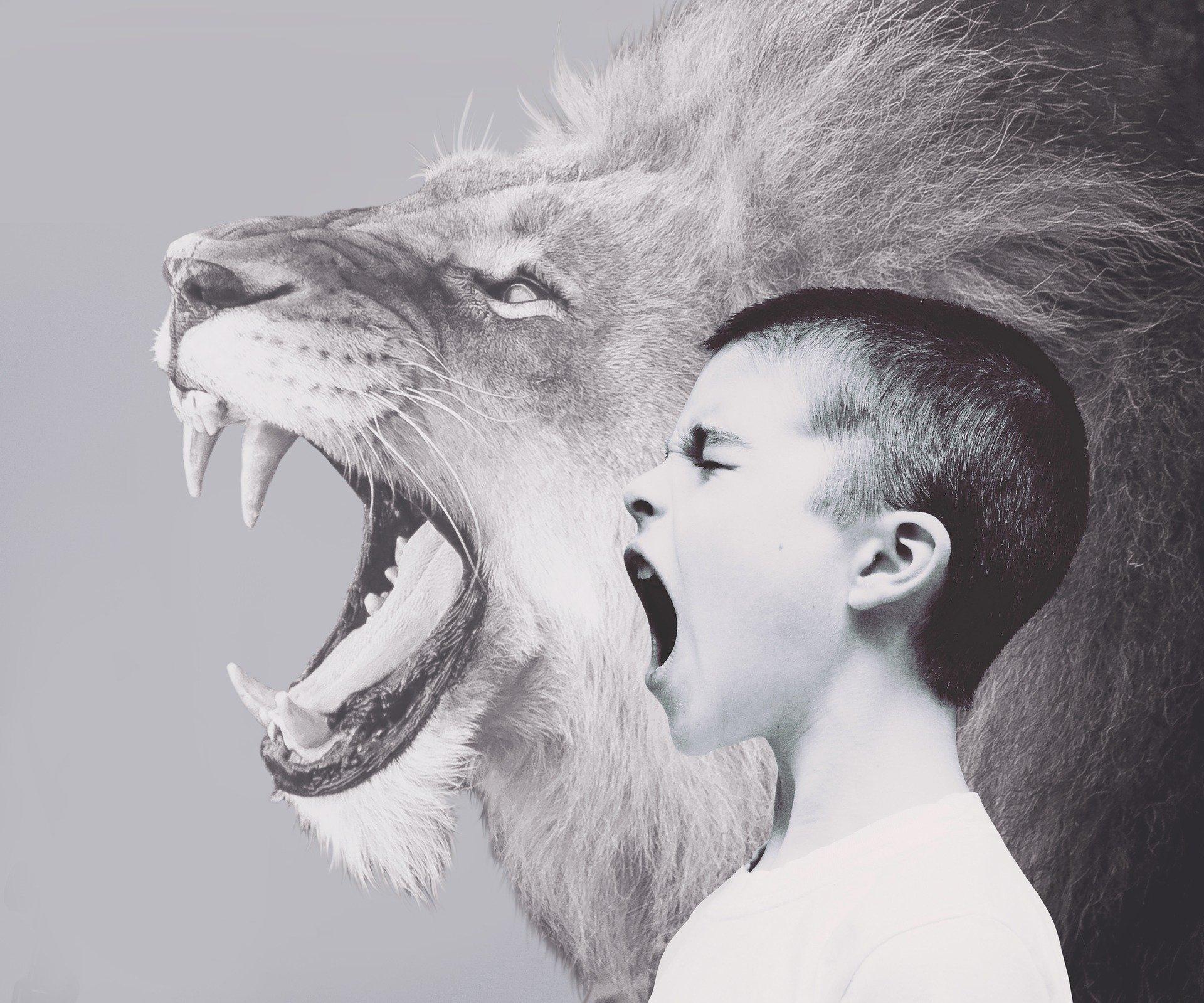 Agresywne zachowania dzieci